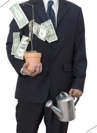 планируем инвестиции - растим денежное дерево